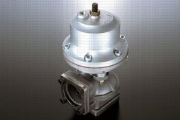 SARD Racing Wastegate - Type CII